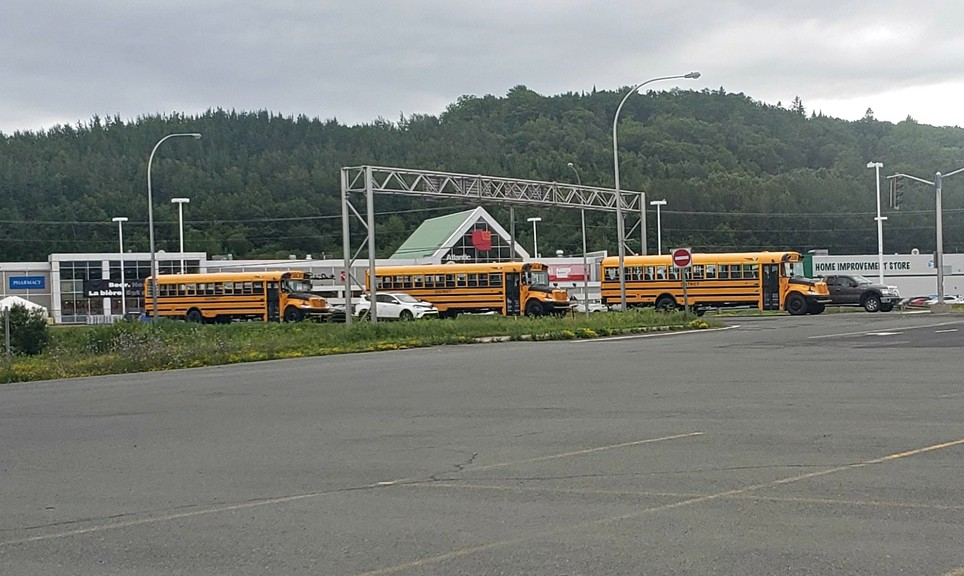 The upcoming school year will feature a number of 'new normals' which may include fewer students on school buses.