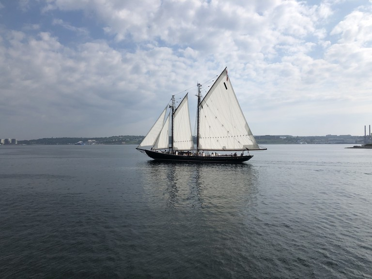 The Bluenose II glides on calm waters.