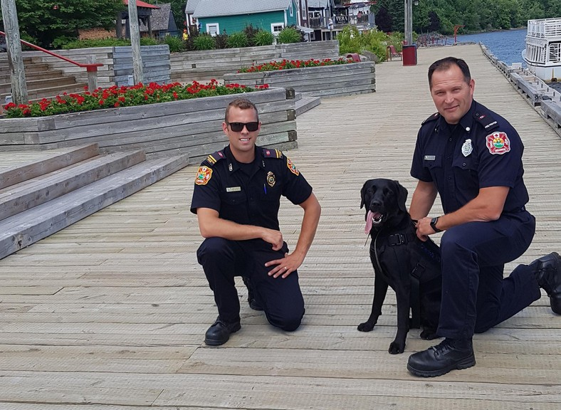 Fire prevention officer Corey Shaddick, left, and firefighter Jason Brennan of the Miramichi Fire Department show therapy dog Charlie B. around Ritchie Wharf Park in Newcastle. The department is applying to obtain a therapy dog full-time, with Brennan expected to serve as its handler.