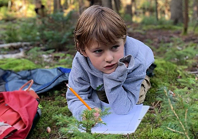 Eight-year-old Edward LeBlanc of Saint John, a student at Tír na nÓg Forest School, takes a moment to reflect as he works on a lesson. LeBlanc, who has been with the school for five years, will begin Grade 3 in September.