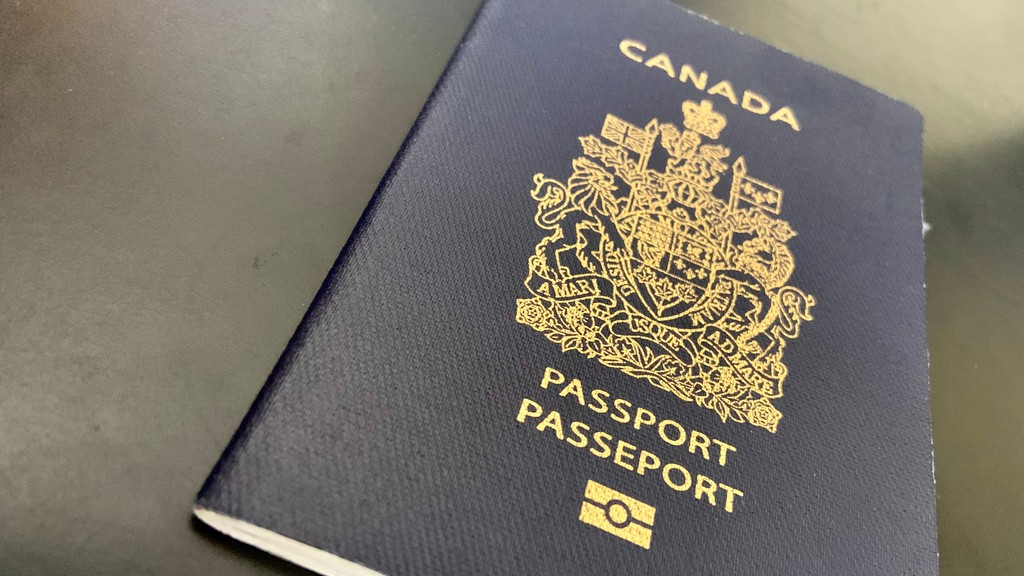 A New Brunswicker is part of a group suing the federal government over its decision to stop processing passport applications during the global pandemic.