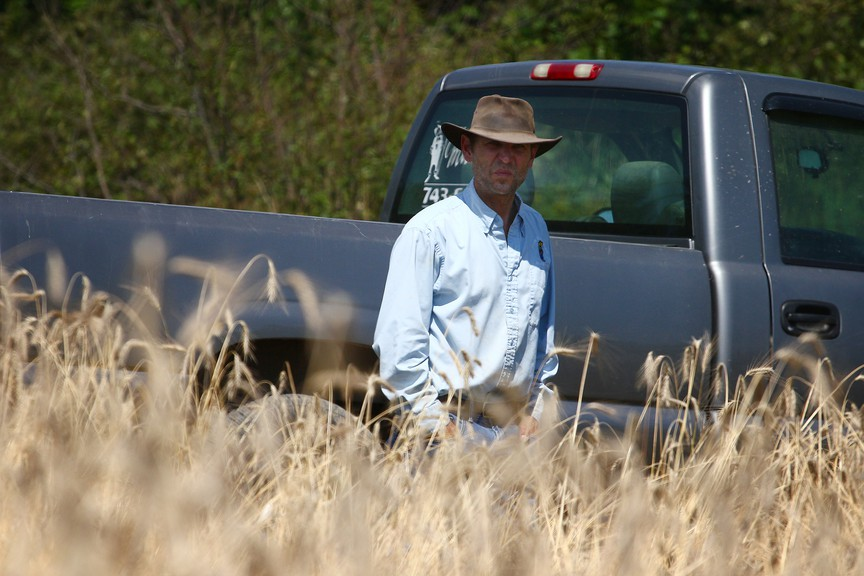 Christian Michaud surveys a field of winter rye - a crop that would be standing taller than him during a normal growing season. Michaud said this summer has been the driest he's experienced.
