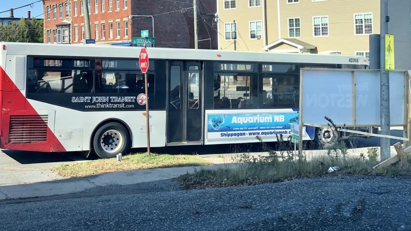 A Saint John Transit bus.