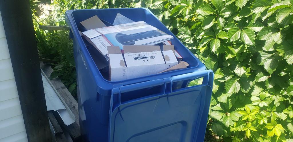 "Raymond J. De Souza writes: ""recycling of plastics has mostly been a crock."""