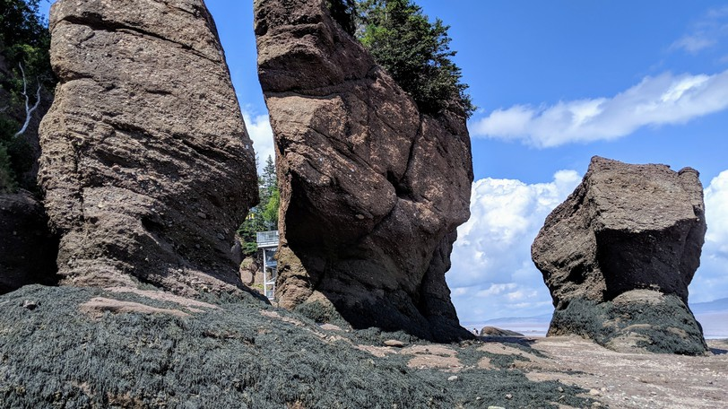 Visitors to Hopewell Rocks were down 80 per cent in 2020 compared to 2019.