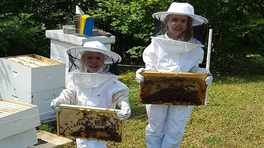 Happy Bee Honey entrepreneurs Taylor Sherwood, 4, and Hayley Sherwood, 8, are pictured working with their hives.