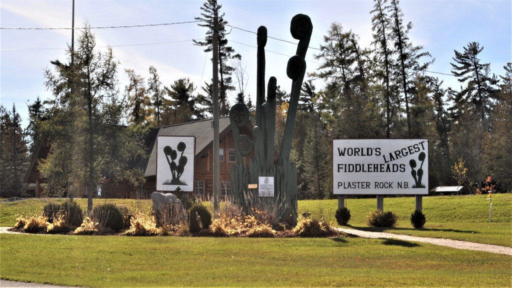 Plaster Rock village council approved the purchase of a new service truck at its Oct. 19 meeting held at the Welcome Centre in the Plaster Rock Tourist Park.