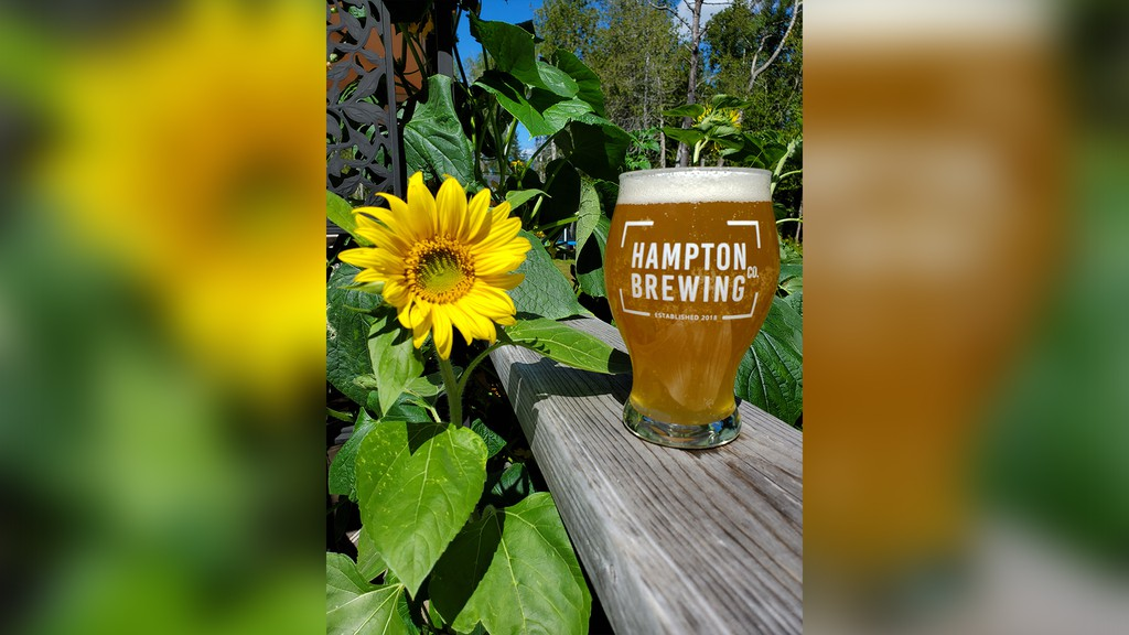 Hampton Brewing Co. is set to start construction on a new brewery and tap room on Robertson Road in Hampton. If everything goes well, the brewery could open its doors as soon as May 2021.