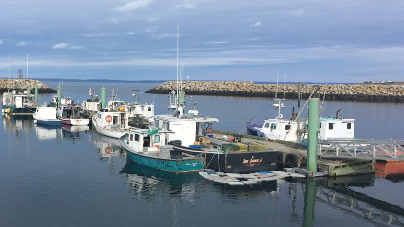 Boats are shown docked at the wharf in Saulnierville, N.S., the site of a contentious self-regulated lobster fishery launched in September 2020 by Sipekne'katik First Nation.