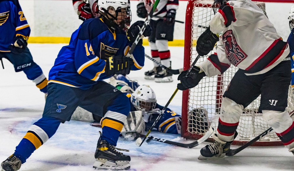 Sam Mercer and the Fredericton U15 Blues are among the teams affected by Hockey New Brunswick's decision to cancel provincials, scheduled for March, due to the COVID-19 pandemic.