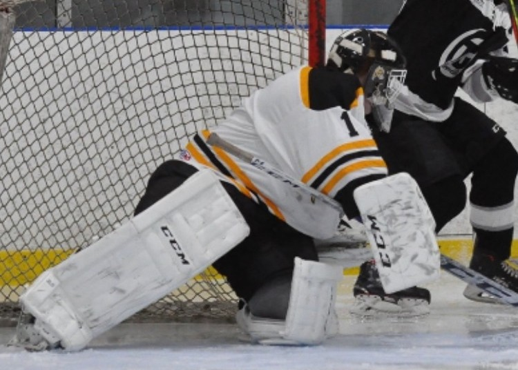 Konner Thompson will make his season debut in goal when the Southern Sting host the Western Valley Panthers in New Brunswick Junior Hockey League action on Saturday at the Fundy Arena in Blacks Harbour.