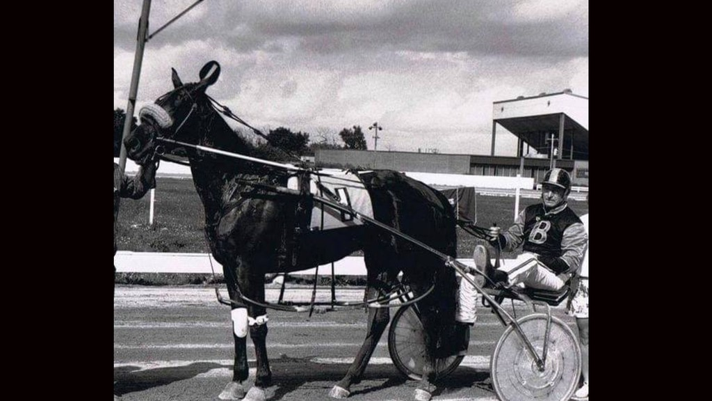 Dean Bustard, who trained horses at Woodstock Raceway, is remembered for his love of horses and welcoming demeanour among those in the Maine and New Brunswick harness racing community.