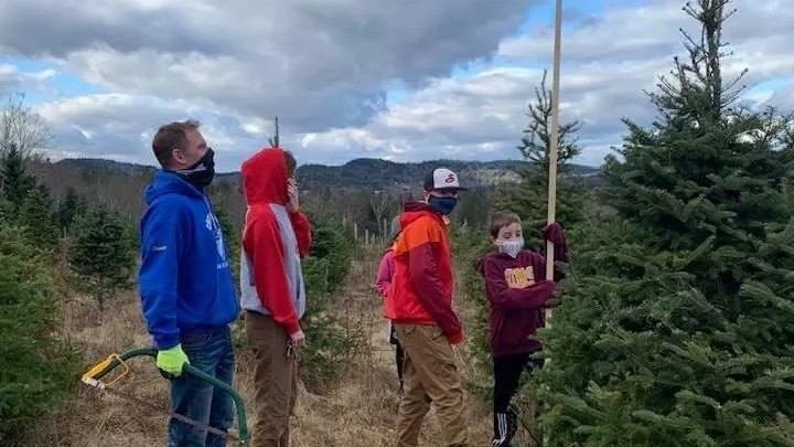 Todd Price with his children Rowan, Jaxon and Rhys size up a tree at Forresters Point Tree Farm this past weekend. The Quispamsis farm sold out of trees in a single day, but the YMCA of Greater Saint John and the Saint John Newcomers Centre will have a selection of live trees available starting this Saturday at the Irving Oil Field House.