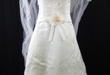 Vera Wang Ivory Strapless Wedding Dress With Veil