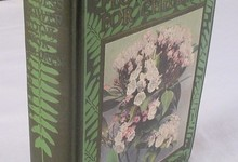 Thornton Burgess 1923 The Burgess Flower Book For Children Signed 1st Edition