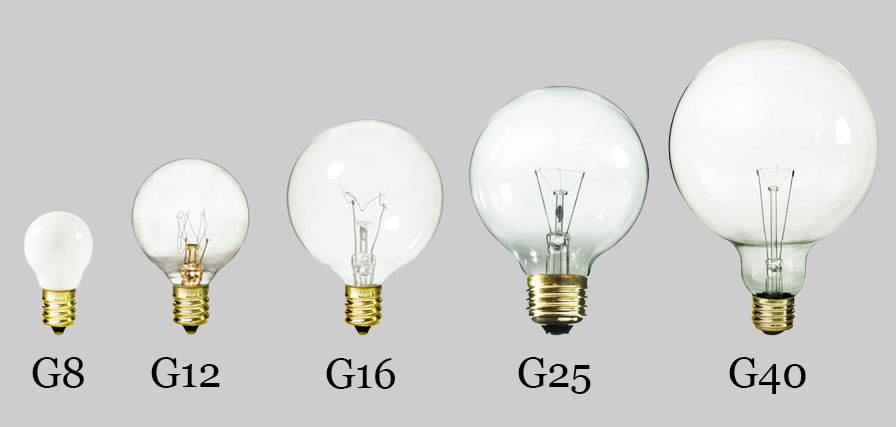 Several sizes of globe light bulbs presented side by side