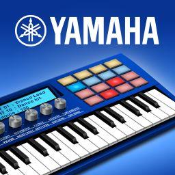 Synthesizer Arpeggiator & Drum Pad - US