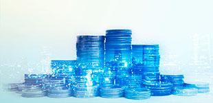 Fondo común de inversiones Renta Fija