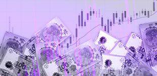 Fondo común de inversiones Pesos plus