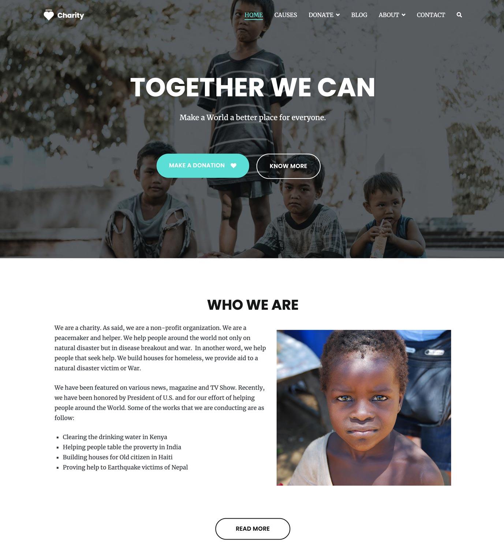 Charity website demo