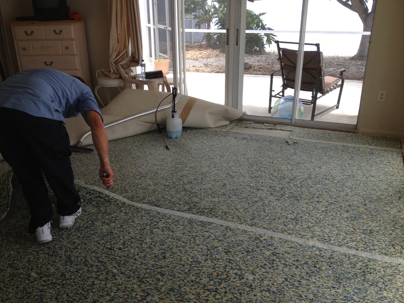 5 Reasons You Don T Want To Clean Carpet Yourself