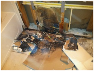 Mold Remediation Ocean Front