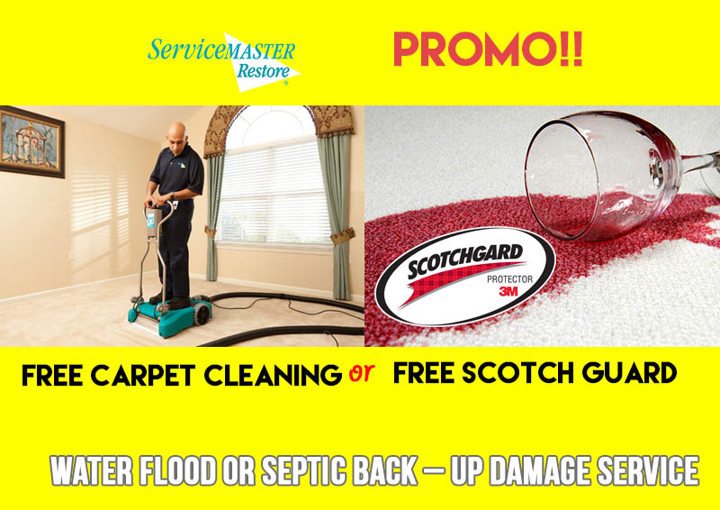 carpet cleaning promo