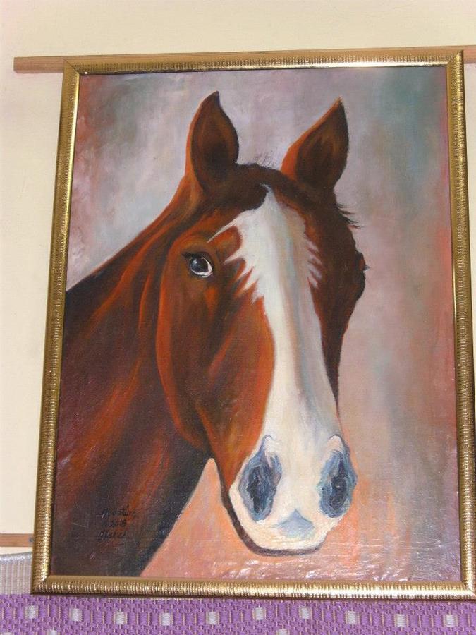 Hüseyin öztürk Kırgız Atı Ressamcom