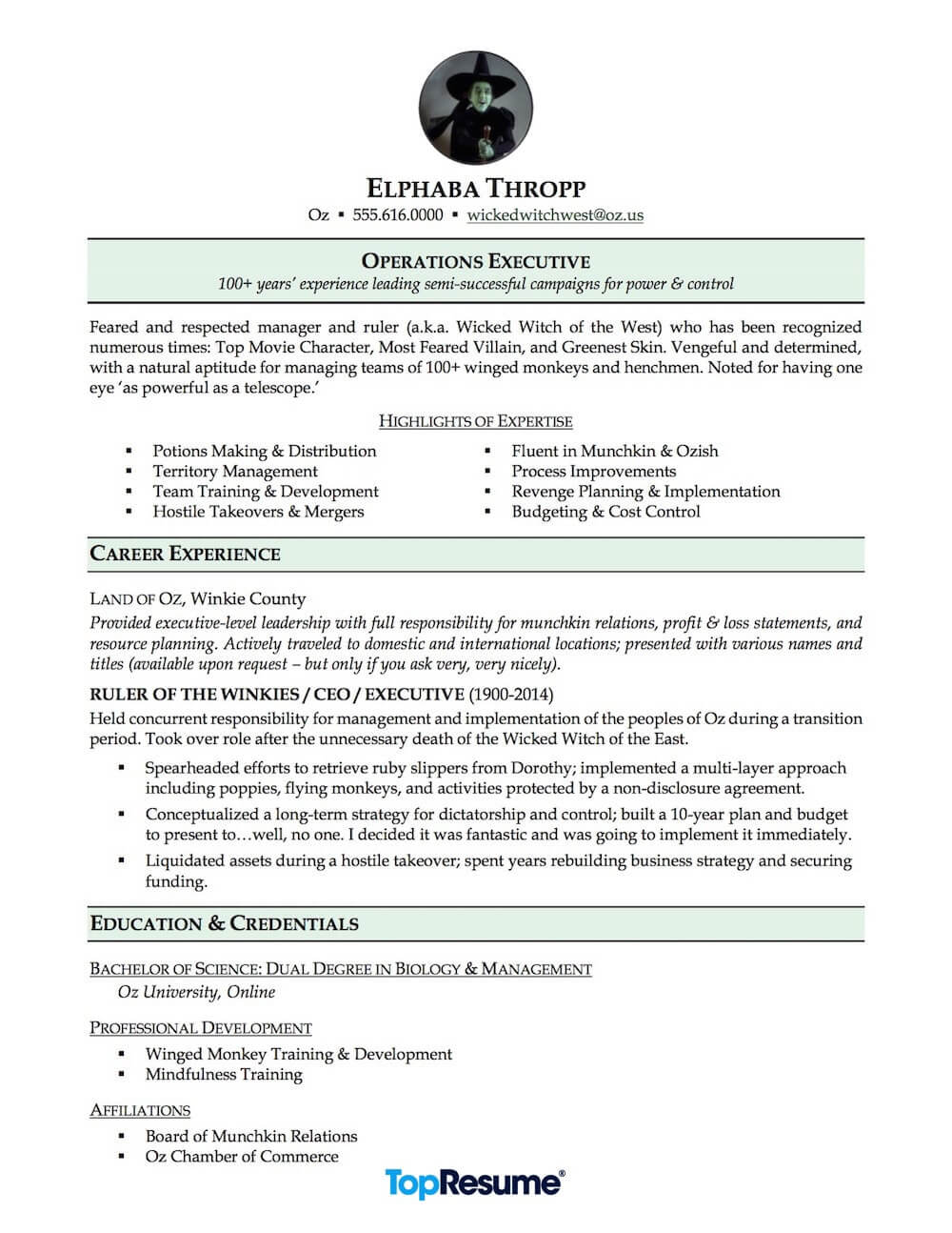 Career Change Resume Sample Wicked Witch of the West