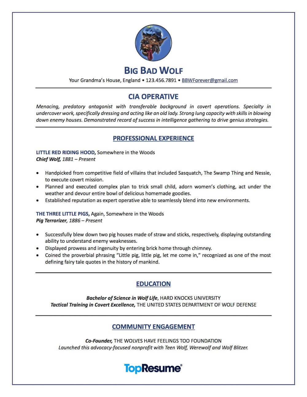 Career Change Resume Sample Big Bad Wolf
