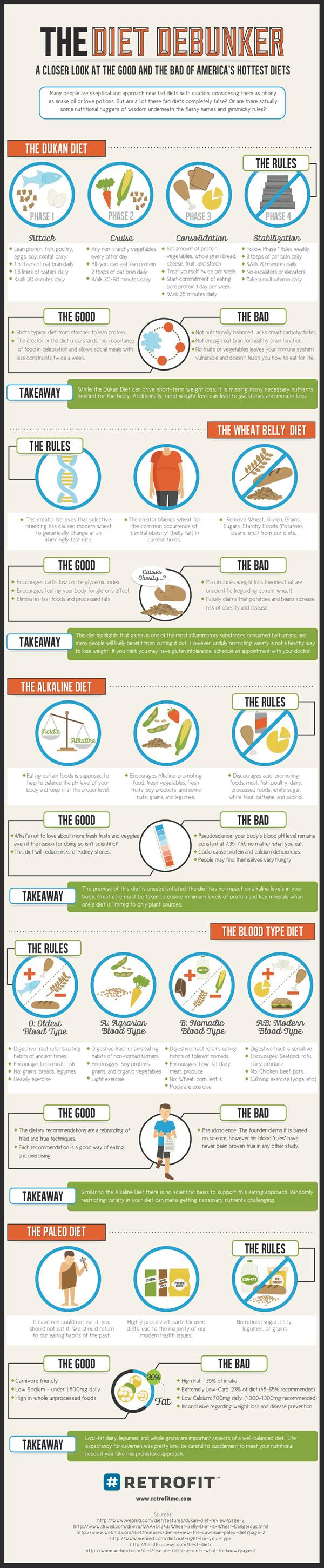 Diet Debunker Infographic