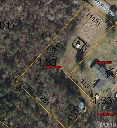 TBD LOUIS SPIVEY ROAD, Belvidere, NC 27919 - Photo 2