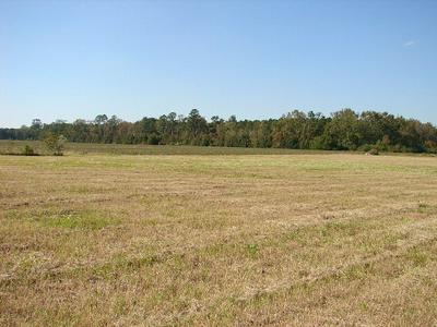 3739 GOVERNORS RD, Kelford, NC 27847 - Photo 2