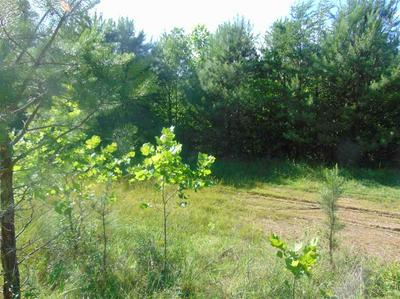 000 FOREST TRAILS, grayson, KY 41143 - Photo 2