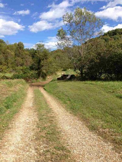 0 GRIFFITH FARM ROAD, Argillite, KY 41121 - Photo 2