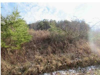 000 BELAIR LAND, grayson, KY 41143 - Photo 2