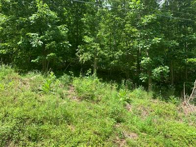 TRACT # 11 INDIAN TRAIL ROAD, Catlettsburg, KY 41129 - Photo 2
