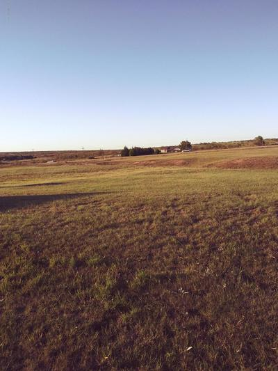 8620 HIGHWAY 136, Fritch, TX 79036 - Photo 2