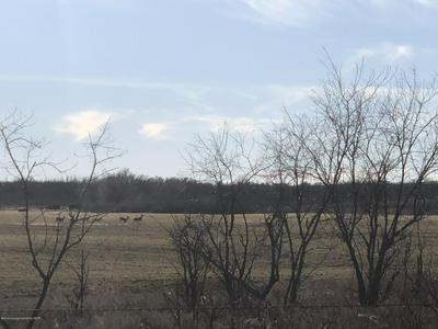 LEWIS 320 RANCH, Shamrock, TX 79079 - Photo 2