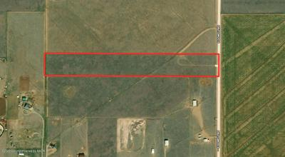 20 ACRES DOWELL RD, Canyon, TX 79015 - Photo 2
