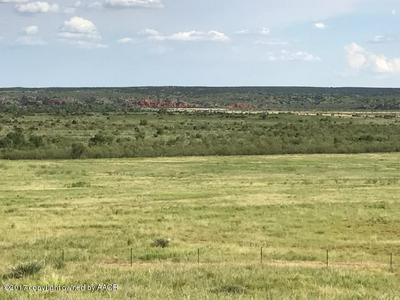 0 TX-70, Clarendon, TX 79226 - Photo 1