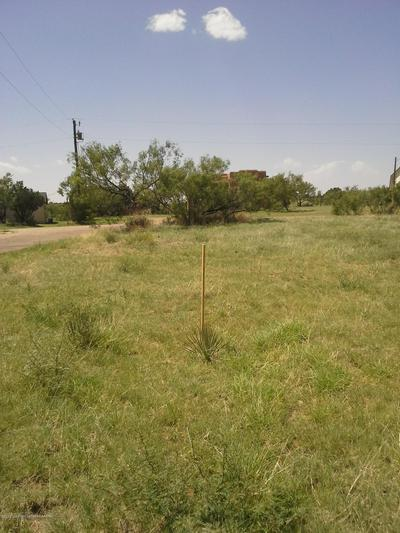 0 VALLEY VIEW DR, CANYON, TX 79015 - Photo 1