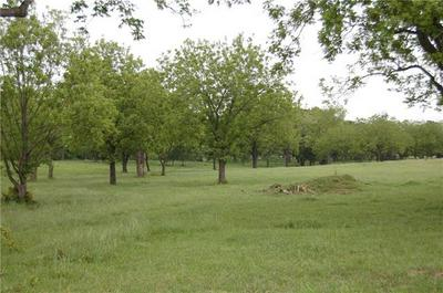 TRACT 4 COUNTY ROAD 455, THRALL, TX 76578 - Photo 2