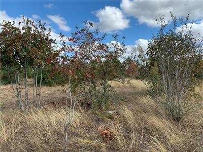 149 WILD BIRD LOOP, Smithville, TX 78957 - Photo 2