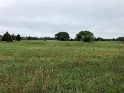 TRACT 2 CR 481, THRALL, TX 76578 - Photo 2