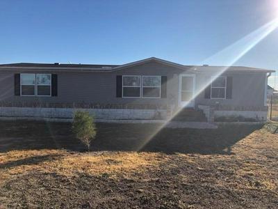 160 SIERRA ROSA DR, Cedar Creek, TX 78612 - Photo 2