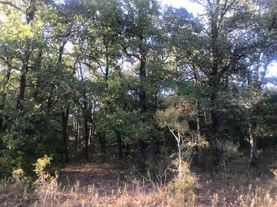 TBD FM 154, Muldoon, TX 78949 - Photo 1