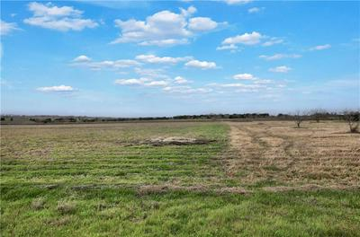 250 COUNTY ROAD 427, Thrall, TX 76578 - Photo 2