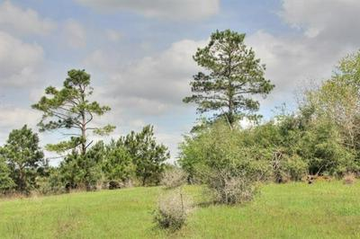 TBD TRACT 19 GOTIER TRACE RD, SMITHVILLE, TX 78957 - Photo 1