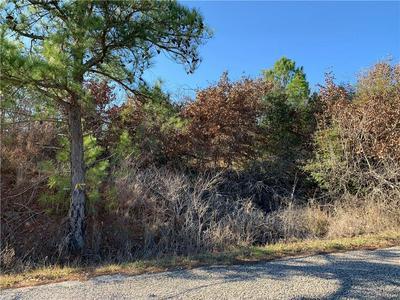 TBD TALL FOREST, Bastrop, TX 78602 - Photo 1